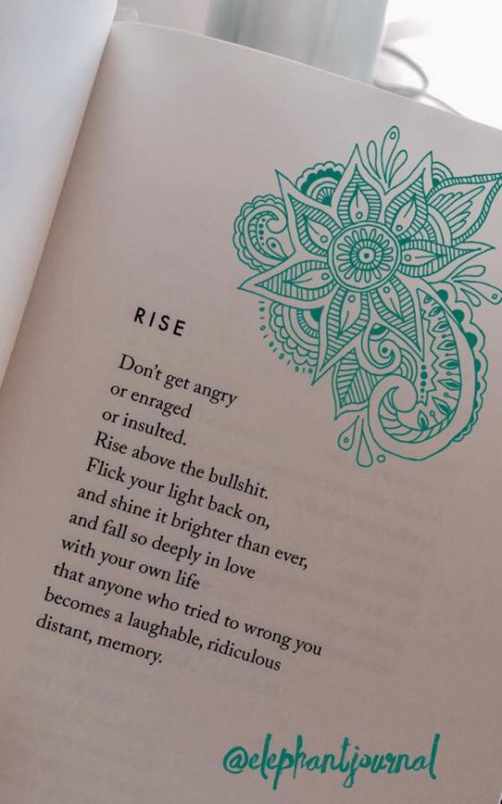 Rise And Dont Get Angry Renee Writes Here